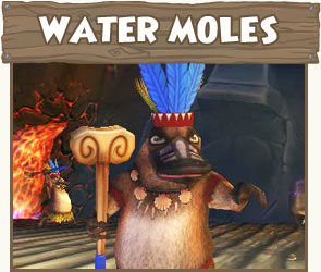 Also seen in Wizard101